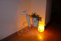 Salon_lamp1